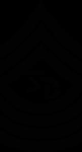 Srgnt Ballastic Logo